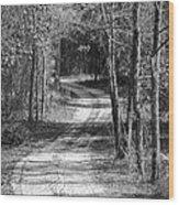 The Beaten Path Wood Print