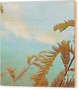The Beauty Of Weeds Wood Print