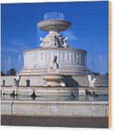 The Belle Isle Scott Fountain Wood Print