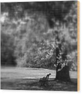 The Bench In The Park Wood Print
