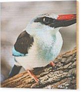 The Bird Knows Wood Print