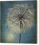 The Blowing Sun Wood Print