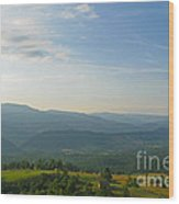 The Blue Ridge Mountains In July 01 Wood Print