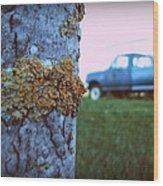 The Blue Truck Wood Print