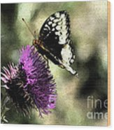 The Butterfly II Wood Print