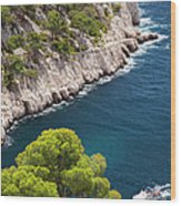 The Calanques Wood Print