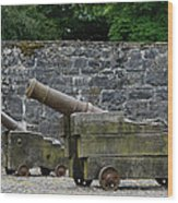 The Cannons Of Bunratty Castle Wood Print