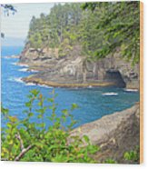 The Caves Of Cape Flattery  Wood Print