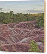 The Cheltenham Badlands Wood Print