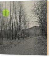 The Circle Green - Bare Walkin Trail Wood Print