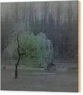 The Circle Green - Tree By The River Wood Print