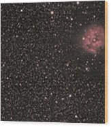 The Cocoon Nebula Wood Print