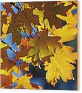 The Colors Of Autumn In Arizona  Wood Print