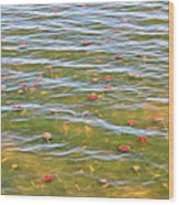 The Colors Of Lily Pads Wood Print