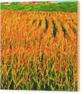The Cornfield Wood Print by Wingsdomain Art and Photography