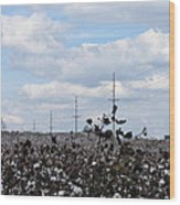 The Cotton Crops Of Limestone County Alabama Wood Print