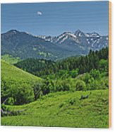 The Crazy Mountains Wood Print
