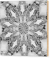 The Crystal Snow Flake Wood Print