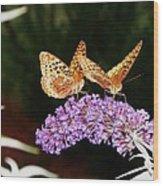 The Dancing Butterflies Wood Print
