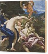 The Death Of Adonis Wood Print by Il Baciccio