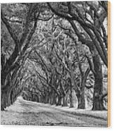 The Deep South Monochrome Wood Print