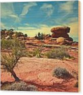 The Desert And The Sky Wood Print