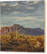 The Desert Golden Hour  Wood Print