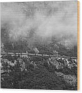 The Distant Train Wood Print