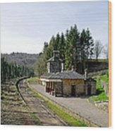 The Disused Alton Towers Railway Station Wood Print
