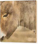 The Donkey Portrait Wood Print by Odon Czintos