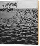 The Dunes At Dusk Wood Print
