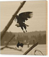 The Eagle Flies With The Crow Wood Print