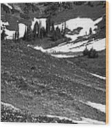 The East Slopes Of Mount Rainier II Wood Print