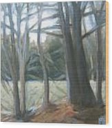 The Edge January Thaw Wood Print