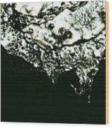 The Edge Wood Print by Robert Cunningham