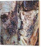 The Elephant Tree Wood Print