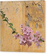 The Escaping Bougainvillea Wood Print