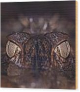 The Eyes Of A Crocodilian Wood Print