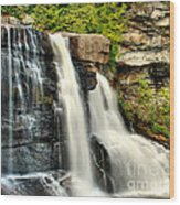 The Face Of The Falls Wood Print