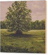 The Fairy Tree Wood Print