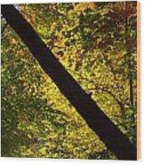 The Fall Split Wood Print