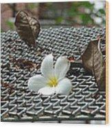 The Fallen Flower Wood Print