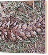 The Fallen Pine Wood Print