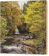 The Falls At West Burton Wood Print