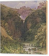 The Falls Of Tivoli Wood Print