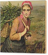 The Fern Gatherer Wood Print