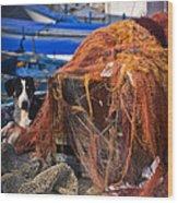 The Fisherman's Dog II Wood Print