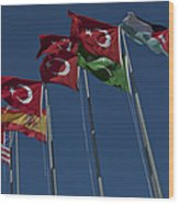 The Flags Of The Participating Nations Wood Print