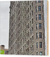 The Flat Iron Building Wood Print