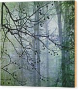 The Forest Cathedral Wood Print by Judi Bagwell